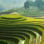 Vietnam visa itzeazy
