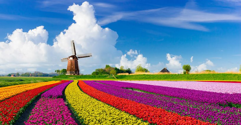 netherland visa from india