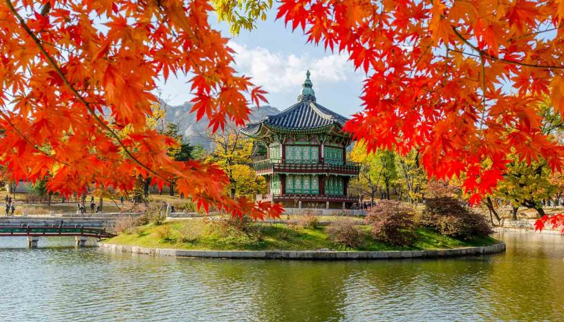 how to apply for south korea visa for Indian